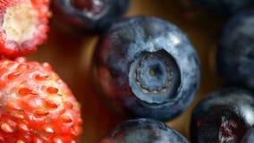 Μούρα των βακκινίων και των φραουλών απόθεμα βίντεο