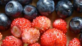 Μούρα των βακκινίων και των φραουλών φιλμ μικρού μήκους