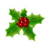 Μούρο της Holly Χριστουγέννων Στοκ Εικόνα