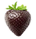 Μούρων φράουλα που απομονώνεται μαύρη Στοκ φωτογραφία με δικαίωμα ελεύθερης χρήσης