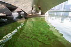 μολυσμένο νερό Στοκ εικόνες με δικαίωμα ελεύθερης χρήσης