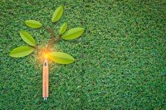 Μολύβι με το έγγραφο κλάδων που κόβεται στην πράσινη έννοια eco τομέων jpg Στοκ φωτογραφία με δικαίωμα ελεύθερης χρήσης