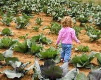 μπάλωμα παιδιών λάχανων Στοκ Εικόνες