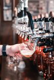 Μπάρμαν που χύνει κάποια σκοτεινή μπύρα τεχνών στο γυαλί στοκ εικόνες