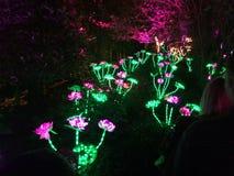 Μπάλωμα λουλουδιών φαντασίας Στοκ εικόνα με δικαίωμα ελεύθερης χρήσης