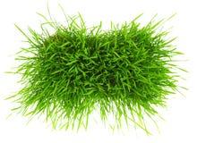 Μπάλωμα της πράσινης χλόης Στοκ Εικόνες