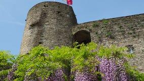 Μπέργκαμο, Ιταλία, η παλαιά πόλη Το φρούριο και το θαυμάσιο ιώδες wisteria άνθισης ανθίζουν φιλμ μικρού μήκους