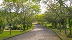 Μπαγαπόντικοι δρόμοι στο πάρκο Στοκ Εικόνες
