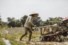 Μπαλί/Ινδονησία - 03 05 2018: το άτομο οργώνει τον τομέα με μεγάλο ένας μηχανή-φραγμός Στοκ εικόνα με δικαίωμα ελεύθερης χρήσης
