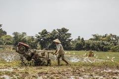 Μπαλί/Ινδονησία - 03 05 2018: το άτομο οργώνει τον τομέα με μεγάλο ένας μηχανή-φραγμός Στοκ Εικόνα