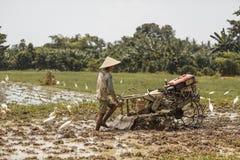 Μπαλί/Ινδονησία - 03 05 2018: το άτομο οργώνει τον τομέα με μεγάλο ένας μηχανή-φραγμός Στοκ Φωτογραφίες