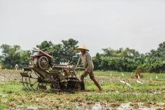 Μπαλί/Ινδονησία - 03 05 2018: το άτομο οργώνει τον τομέα με μεγάλο ένας μηχανή-φραγμός Στοκ Φωτογραφία