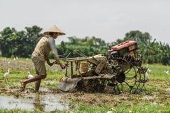 Μπαλί/Ινδονησία - 03 05 2018: το άτομο οργώνει τον τομέα με μεγάλο ένας μηχανή-φραγμός Στοκ φωτογραφία με δικαίωμα ελεύθερης χρήσης