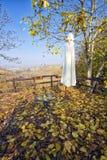 Μπαλκόνι και φύλλα πέρα από την περιοχή Piedmont, βόρεια Ιταλία Langhe Εικόνα χρώματος Στοκ Εικόνα