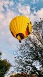 Μπαλόνι προσώπου Smiley πέρα από τα δέντρα Στοκ Φωτογραφίες