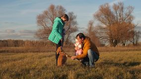 Μπαμπάς με τα μικρά παιδιά που κτυπούν το σκυλί που περπατά στο πάρκο φιλμ μικρού μήκους