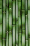 μπαμπού ανασκόπησης Στοκ εικόνα με δικαίωμα ελεύθερης χρήσης