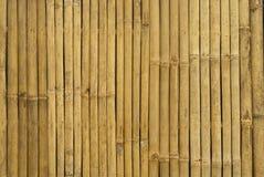 μπαμπού χρυσή Ταϊλάνδη Στοκ Εικόνες