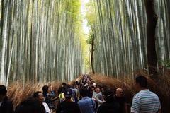 Μπαμπού arashiyama ταξιδιωτικών μακριών περιπετειωδών μυθιστορημάτων Στοκ Φωτογραφίες
