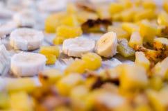 Μπανάνα & ανανάς Στοκ Εικόνα