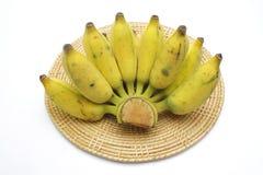 μπανάνα που καλλιεργείτ&al Στοκ Εικόνα