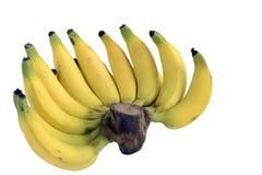Μπανάνα στην άσπρη ανασκόπηση Στοκ εικόνα με δικαίωμα ελεύθερης χρήσης