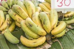 Μπανάνα στην αγορά Στοκ φωτογραφία με δικαίωμα ελεύθερης χρήσης