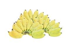 μπανάνα Ταϊλανδός Στοκ Εικόνες