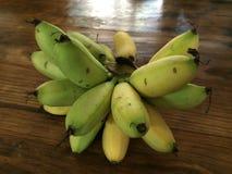 μπανάνα χρυσή Στοκ Εικόνες