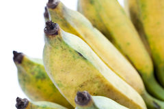 Μπανάνα Στοκ Φωτογραφία