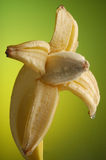 μπανάνα 5 υγρή Στοκ Εικόνες
