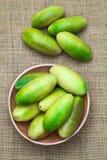 Μπανάνα Passionfruit (lat Passiflora Tripartita) Στοκ φωτογραφία με δικαίωμα ελεύθερης χρήσης