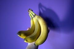 Μπανάνες εκμετάλλευσης χεριών Στοκ Φωτογραφία