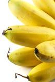 Μπανάνες που απομονώνονται σε ένα λευκό Στοκ Εικόνες
