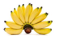 Μπανάνες που απομονώνονται στο άσπρο υπόβαθρο στοκ εικόνες με δικαίωμα ελεύθερης χρήσης