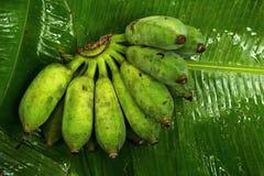 Μπανάνες που τοποθετούνται στα φύλλα μπανανών Στοκ φωτογραφία με δικαίωμα ελεύθερης χρήσης