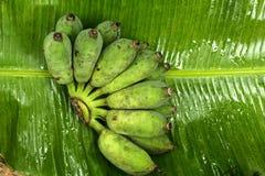 Μπανάνες που τοποθετούνται στα φύλλα μπανανών Στοκ Φωτογραφία
