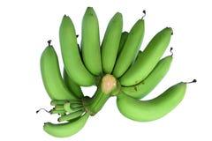 Μπανάνες πράσινες στο άσπρο υπόβαθρο Στοκ εικόνα με δικαίωμα ελεύθερης χρήσης