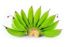 μπανάνες πράσινες Στοκ Εικόνες