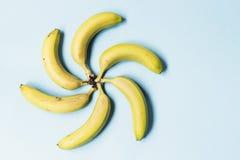 Μπανάνες σε ένα μπλε υπόβαθρο Στοκ Εικόνα
