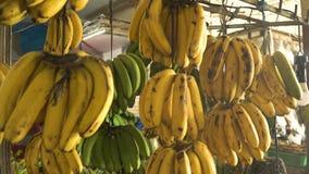 Μπανάνες στην αγορά φρούτων απόθεμα βίντεο
