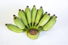 Μπανάνες, ταϊλανδική καλλιεργημένη μπανάνα, ταϊλανδικές μπανάνες Στοκ εικόνα με δικαίωμα ελεύθερης χρήσης