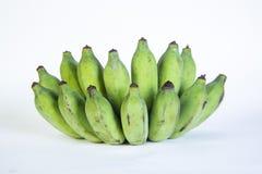 Μπανάνες, ταϊλανδική καλλιεργημένη μπανάνα, ταϊλανδικές μπανάνες Στοκ εικόνες με δικαίωμα ελεύθερης χρήσης