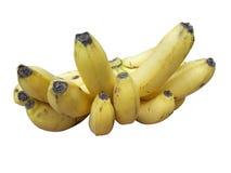 Μπανάνες φρούτων μπανανών στοκ εικόνα