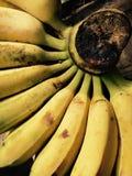 μπανάνες ώριμες Στοκ φωτογραφίες με δικαίωμα ελεύθερης χρήσης