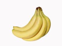 μπανάνες Στοκ εικόνες με δικαίωμα ελεύθερης χρήσης