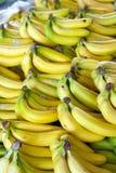 μπανάνες Στοκ φωτογραφίες με δικαίωμα ελεύθερης χρήσης