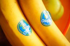 Μπανάνες Chiquita Στοκ Εικόνες