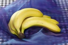 Μπανάνες - popart Στοκ Φωτογραφία