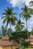 Μπανγκαλόου σε έναν τροπικό κήπο Στοκ φωτογραφία με δικαίωμα ελεύθερης χρήσης